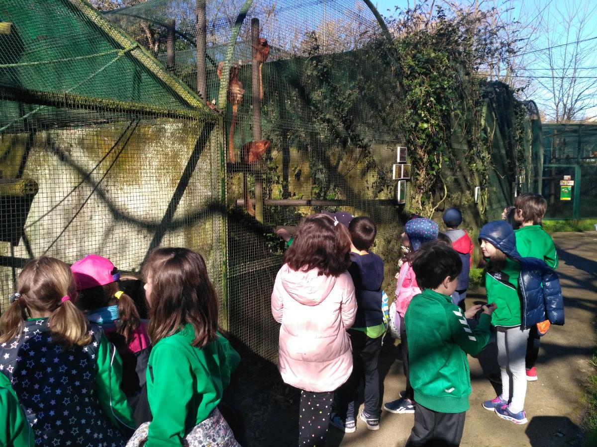Visita al Zoo de Santillana del Mar